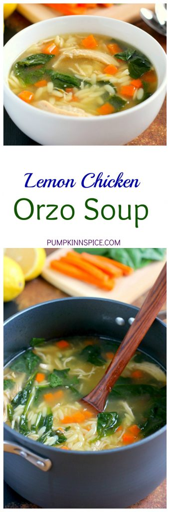 This Lemon Chicken Orzo Soup jam-packed with fresh vegetables, tender chicken, and enveloped with a lemon broth. It's a delicious, one pot meal that is easy to whip up and full of flavor!
