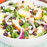 Apple Cranberry Pecan Salad with Honey Cider Vinaigrette