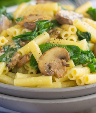 This Garlic Parmesan Pasta with Spinach and Mushrooms is an easy, 20 minute meal that the whole family will enjoy. Filled with fresh mushrooms, spinach, garlic and Parmesan cheese, this creamy pasta is bursting with flavor and ready in no time!