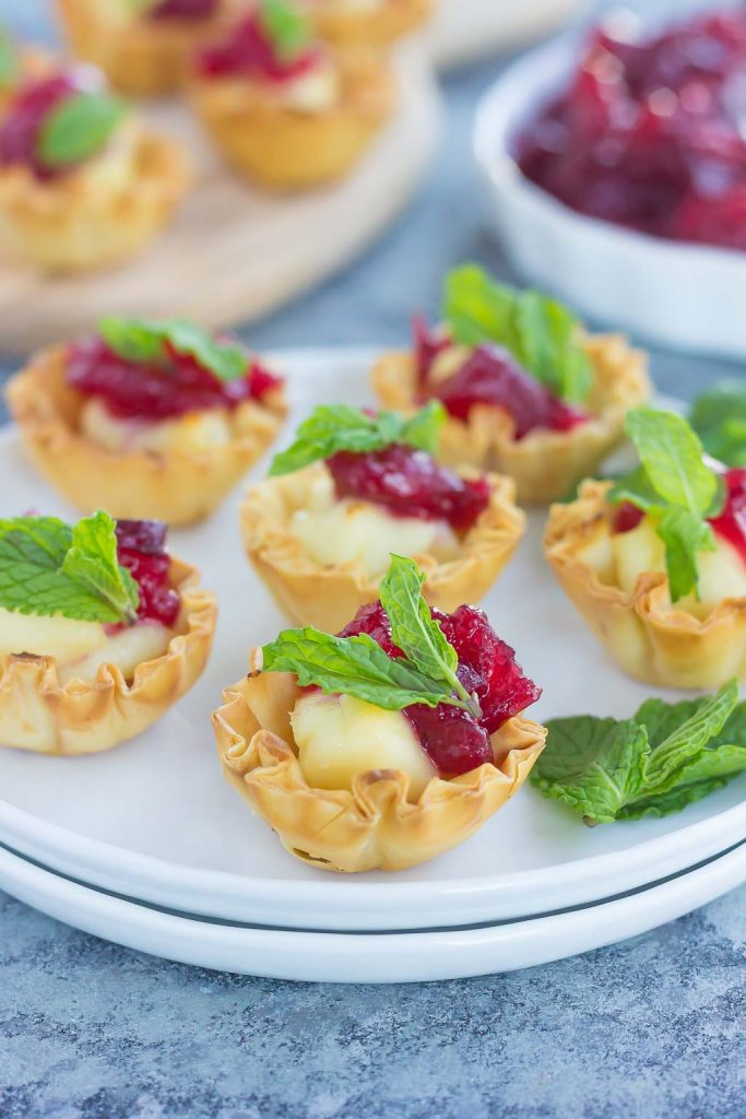 These Cranberry Brie Bites contain just four ingredients and can be prepped and ready to be devoured in less than 20 minutes. This easy appetizer is sweet, savory, and perfect for entertaining during the holiday season!