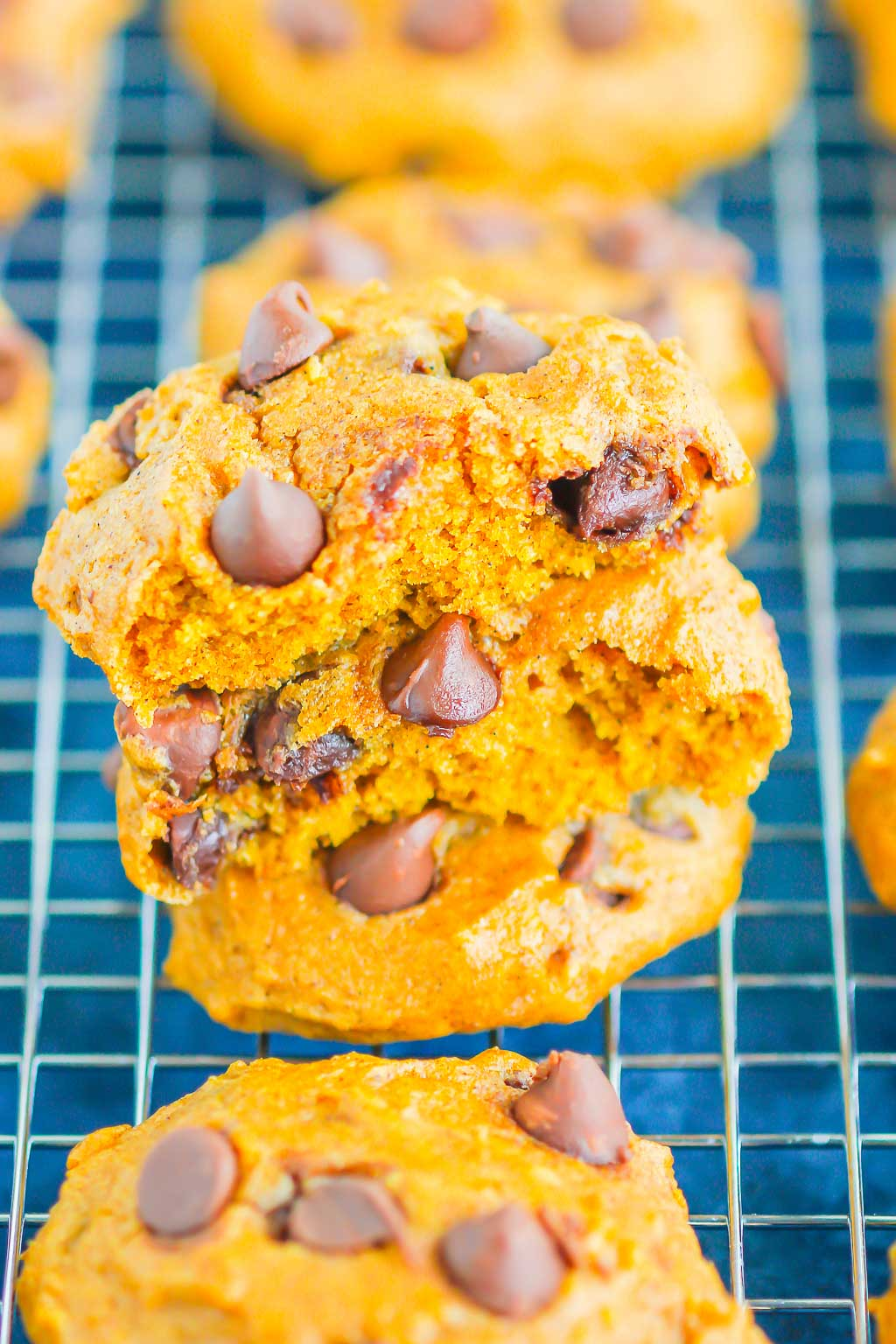 Pumpkin Chocolate Chip Cookies are an easy, one bowl recipe that's ready in no time. These cookies bake up soft and cakey, with hints of pumpkin and sweet chocolate. It's the perfect combination for an autumn sweet treat! #cookies #pumpkincookies #pumpkinchocolatechipcookies #pumpkindessert #falldessert #pumpkinrecipe