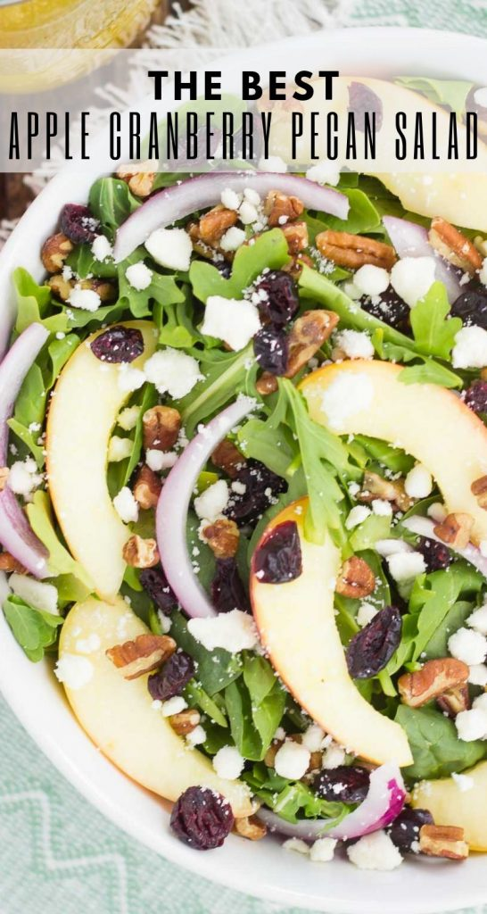 This Apple Cranberry Pecan Salad with Honey Cider Vinaigrette is sweet, savory, and comes together in minutes. Featuring fall-inspired ingredients, such as fresh apple slices, dried cranberries, red onion, pecans, and feta, this salad is full of flavor and makes a healthier lunch or dinner! #salad #saladrecipes #fallsalads #fallsaladrecipes #applesalad #healthysalad #healthysaladrecipes #healthysidedish #recipe