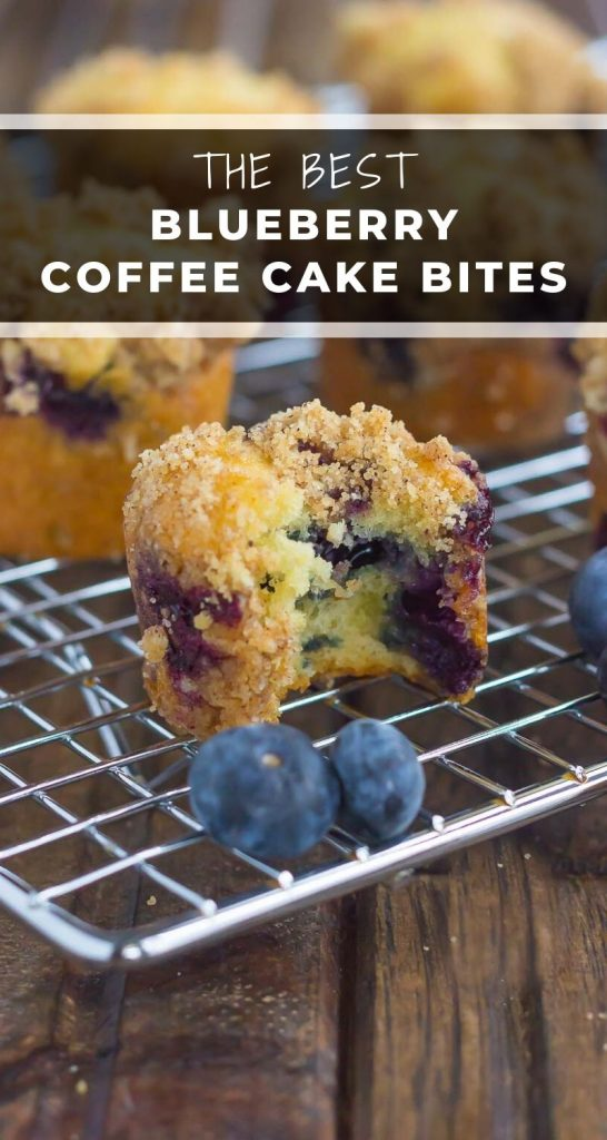These Blueberry Coffee Cake Bites make the best breakfast or dessert. Loaded with juicy blueberries, topped with a cinnamon crumble, and baked to perfection, these mini bites are fun to make and even better to eat! #cake #coffeecake #coffeecakerecipe #cakebites #coffeecakebites #blueberrycoffeecake #breakfast #dessert