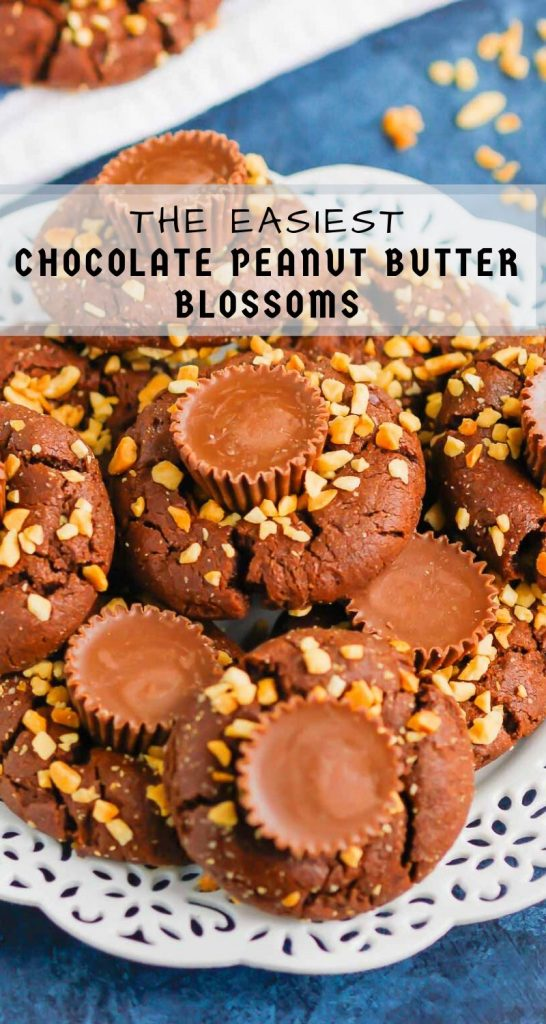 This fun spin on Chocolate Peanut Butter Blossoms adds even more chocolate and peanut butter flavor in every bite. This easy cookie recipe is soft, chewy, and all around delicious! #cookies #chocolatecookies #peanutbuttercookies #peanutbutterblossoms #blossomcookies #cookierecipe #holidaycookies #christmascookies #dessert